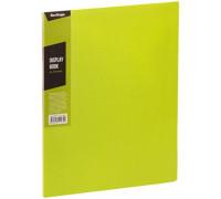 """Папка с 20 вкладышами Berlingo """"Color Zone"""", 14мм, 600мкм, салатовая, AVp_20619"""