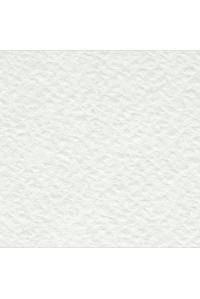 Бумага рисовальная акварельная А1 ЛенГознак, 860*610, 200г/м2, по 100л.97002,(Торшун)